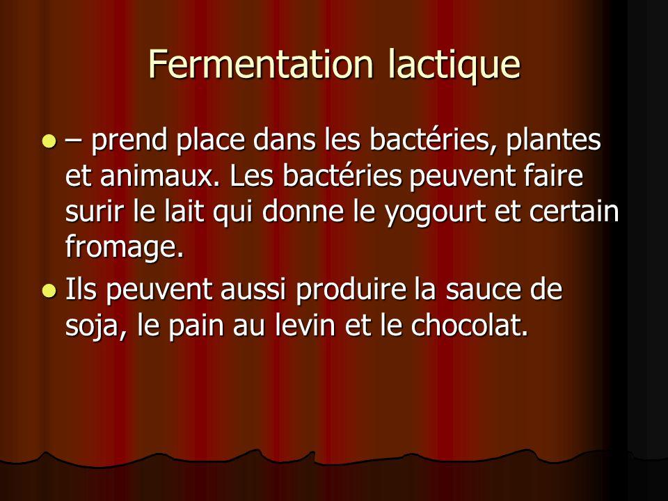 Fermentation lactique – prend place dans les bactéries, plantes et animaux.