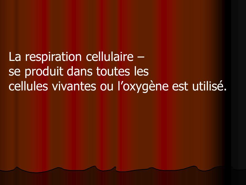 La respiration cellulaire – se produit dans toutes les cellules vivantes ou loxygène est utilisé.