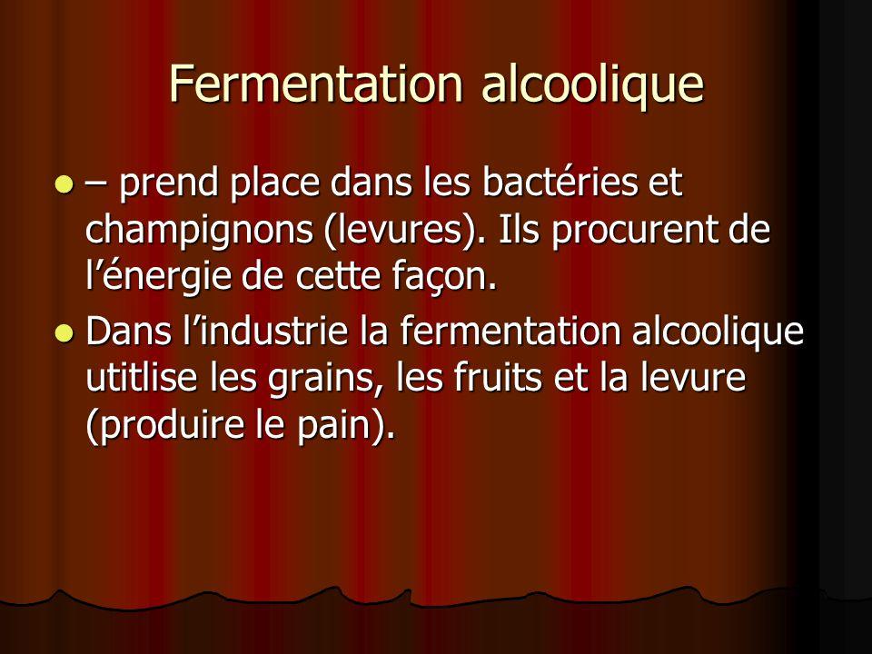 Fermentation alcoolique – prend place dans les bactéries et champignons (levures).