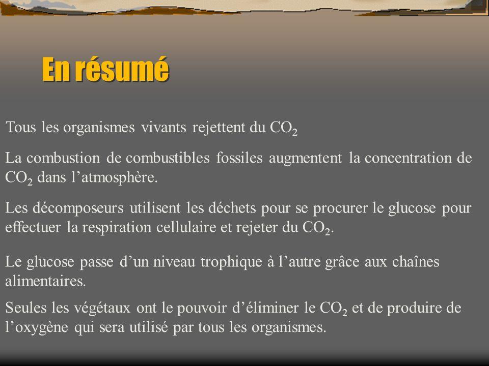 En résumé Tous les organismes vivants rejettent du CO 2 La combustion de combustibles fossiles augmentent la concentration de CO 2 dans latmosphère. L