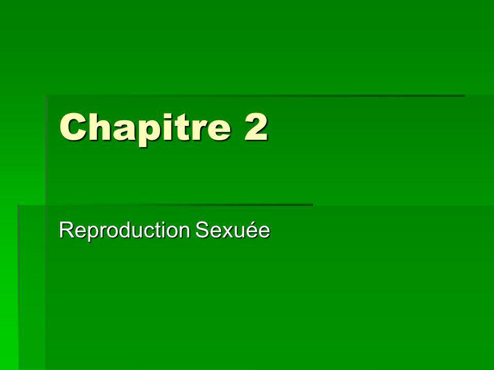 Chapitre 2 Reproduction Sexuée
