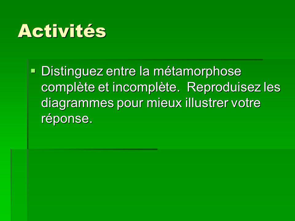 Activités Distinguez entre la métamorphose complète et incomplète. Reproduisez les diagrammes pour mieux illustrer votre réponse. Distinguez entre la