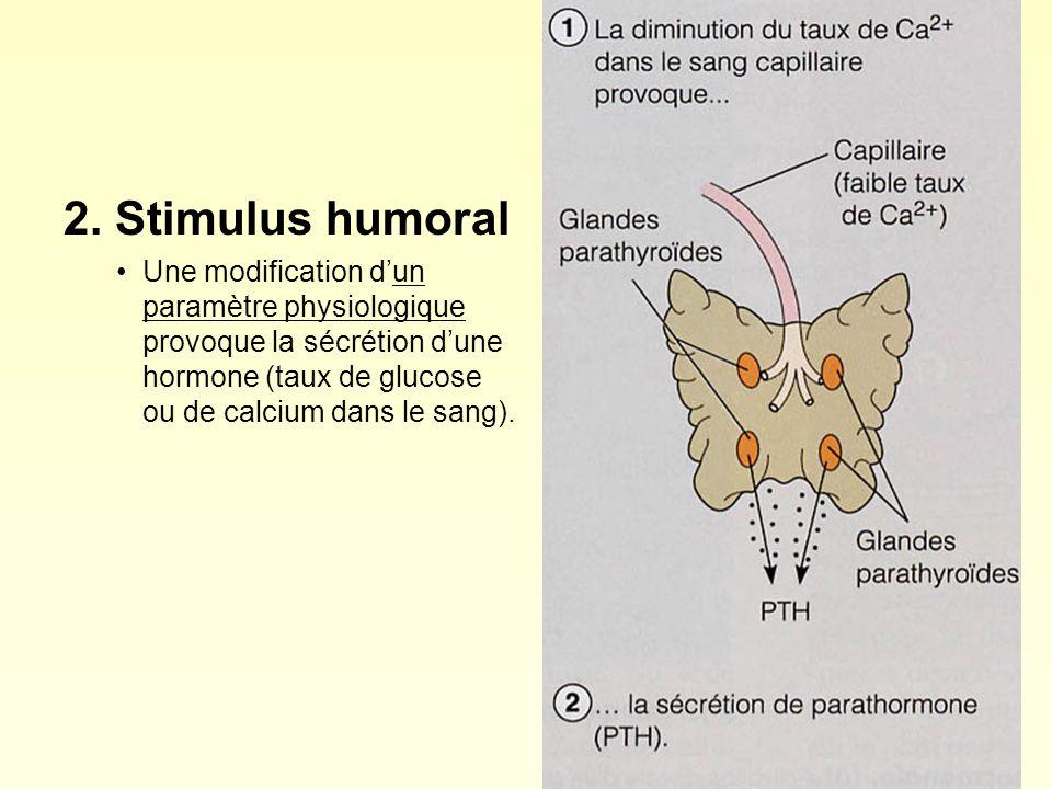 2. Stimulus humoral Une modification dun paramètre physiologique provoque la sécrétion dune hormone (taux de glucose ou de calcium dans le sang).