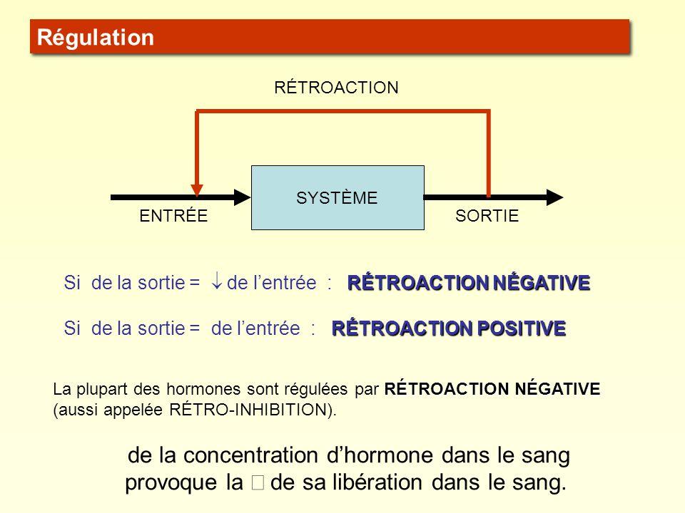SYSTÈME ENTRÉESORTIE RÉTROACTION RÉTROACTION NÉGATIVE Si de la sortie = de lentrée : RÉTROACTION NÉGATIVE RÉTROACTION POSITIVE Si de la sortie = de le