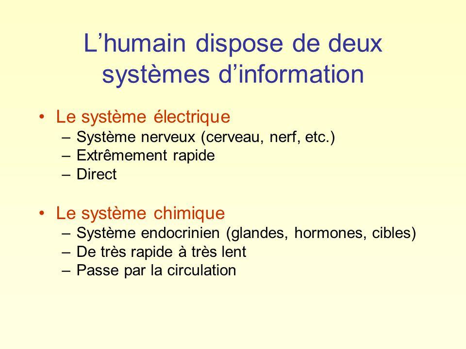 Lhumain dispose de deux systèmes dinformation Le système électrique –Système nerveux (cerveau, nerf, etc.) –Extrêmement rapide –Direct Le système chimique –Système endocrinien (glandes, hormones, cibles) –De très rapide à très lent –Passe par la circulation