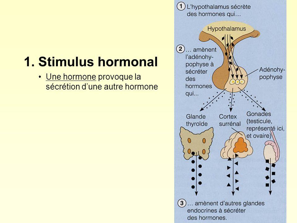 1. Stimulus hormonal Une hormone provoque la sécrétion dune autre hormone
