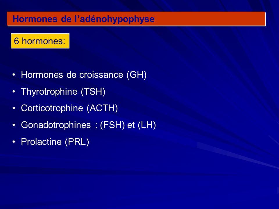Hormones de ladénohypophyse Hormones de croissance (GH) Thyrotrophine (TSH) Corticotrophine (ACTH) Gonadotrophines : (FSH) et (LH) Prolactine (PRL) 6