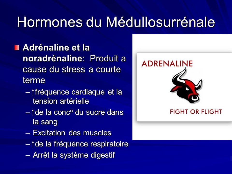 Hormones du Médullosurrénale Adrénaline et la noradrénaline: Produit a cause du stress a courte terme – fréquence cardiaque et la tension artérielle –