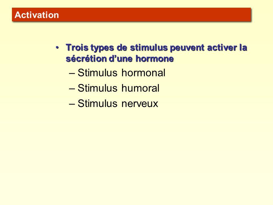 SYSTÈME ENTRÉESORTIE RÉTROACTION RÉTROACTION NÉGATIVE Si de la sortie = de lentrée : RÉTROACTION NÉGATIVE RÉTROACTION POSITIVE Si de la sortie = de lentrée : RÉTROACTION POSITIVE RÉTROACTION NÉGATIVE La plupart des hormones sont régulées par RÉTROACTION NÉGATIVE (aussi appelée RÉTRO-INHIBITION).