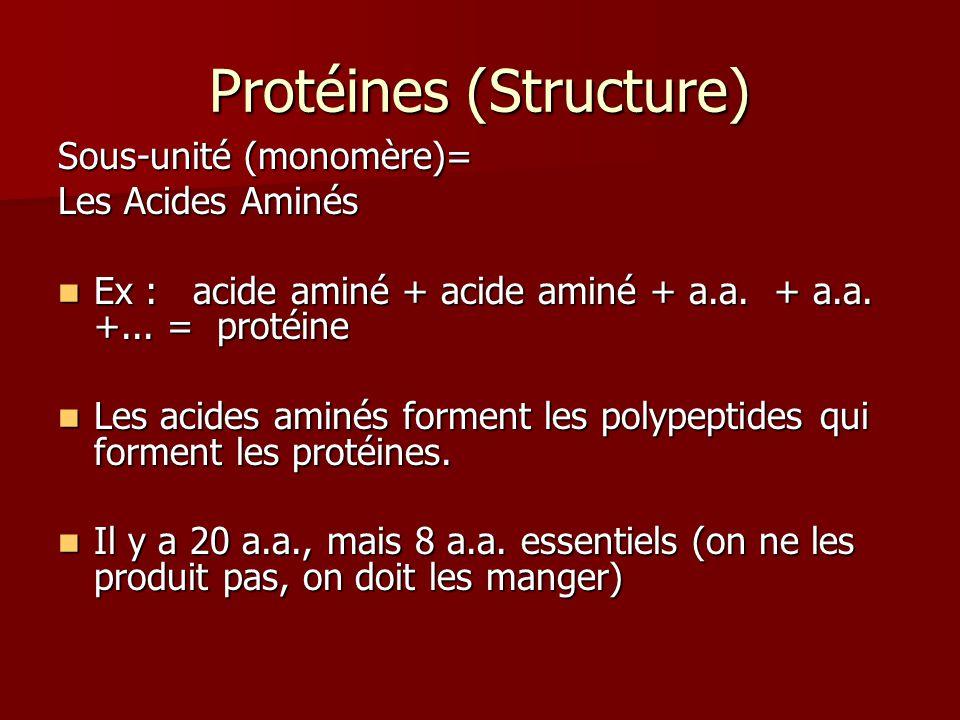 Protéines (Structure) Sous-unité (monomère)= Les Acides Aminés Ex : acide aminé + acide aminé + a.a. + a.a. +... = protéine Ex : acide aminé + acide a