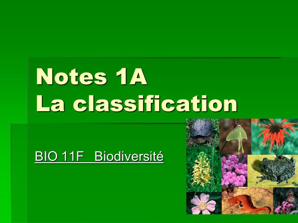 Notes 1A La classification BIO 11FBiodiversité