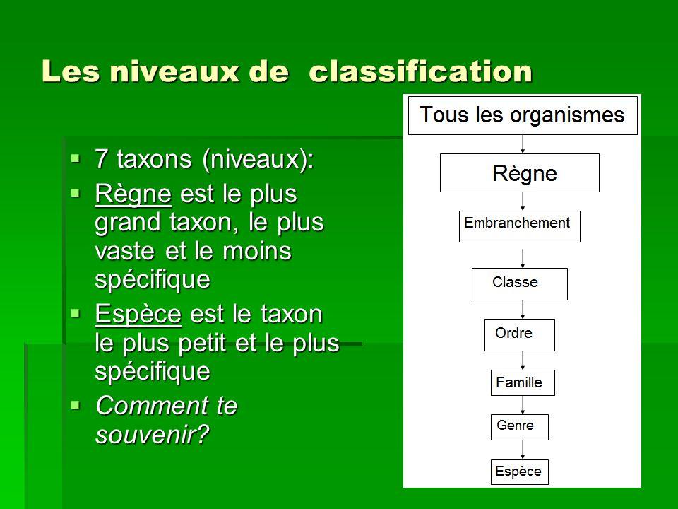 Les niveaux de classification 7 taxons (niveaux): 7 taxons (niveaux): Règne est le plus grand taxon, le plus vaste et le moins spécifique Règne est le