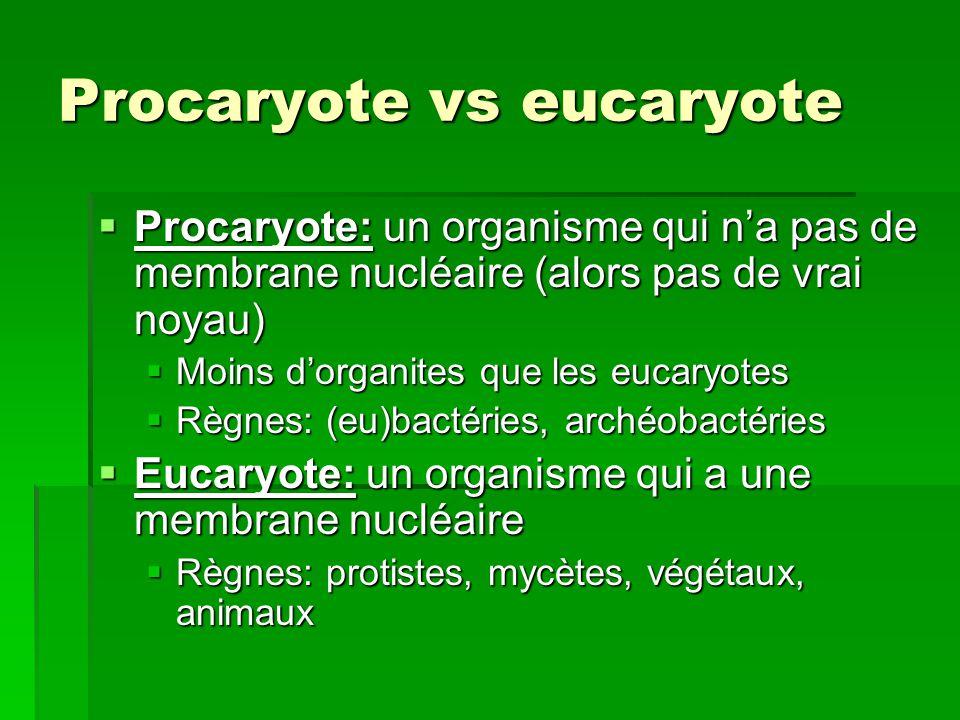 Procaryote vs eucaryote Procaryote: un organisme qui na pas de membrane nucléaire (alors pas de vrai noyau) Procaryote: un organisme qui na pas de mem