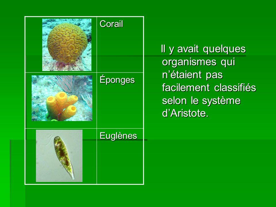 Il y avait quelques organismes qui nétaient pas facilement classifiés selon le système dAristote. Il y avait quelques organismes qui nétaient pas faci