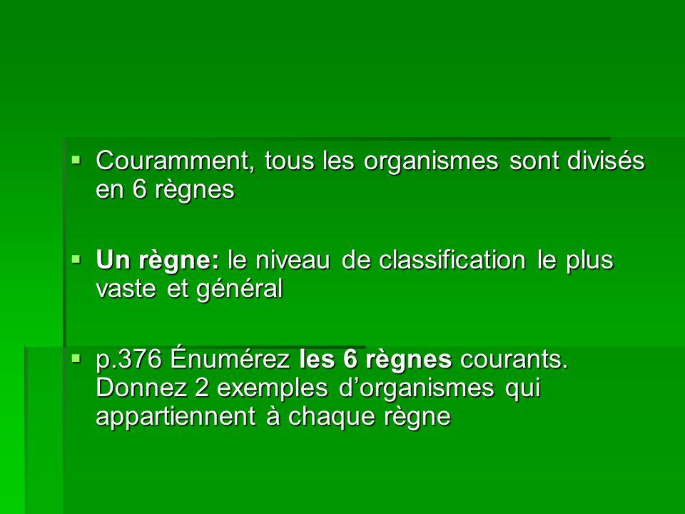 Couramment, tous les organismes sont divisés en 6 règnes Couramment, tous les organismes sont divisés en 6 règnes Un règne: le niveau de classificatio