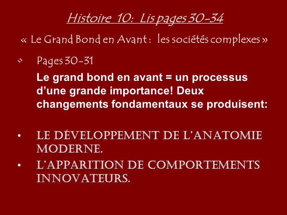Histoire 10: Lis pages 30-34 « Le Grand Bond en Avant : les sociétés complexes » Pages 30-31 Le grand bond en avant = un processus dune grande importa