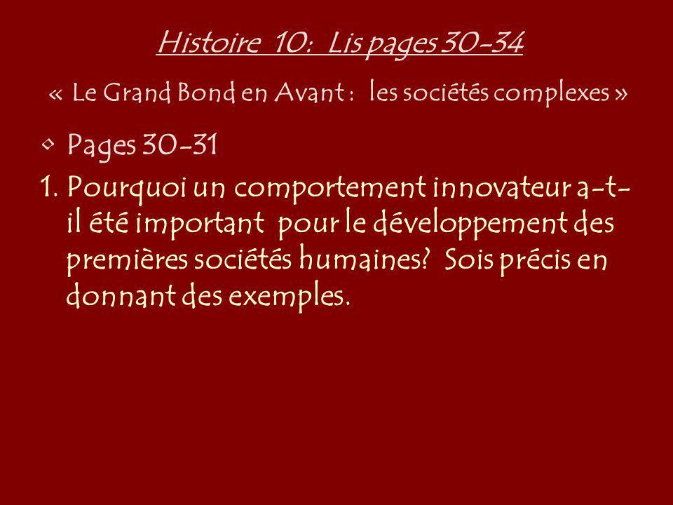 Histoire 10: Lis pages 30-34 « Le Grand Bond en Avant : les sociétés complexes » Pages 30-31 1.Pourquoi un comportement innovateur a-t- il été importa