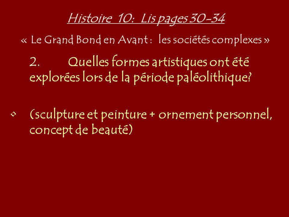 Histoire 10: Lis pages 30-34 « Le Grand Bond en Avant : les sociétés complexes » 2.Quelles formes artistiques ont été explorées lors de la période pal