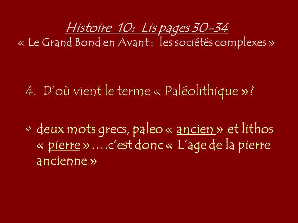 Histoire 10: Lis pages 30-34 « Le Grand Bond en Avant : les sociétés complexes » 4. Doù vient le terme « Paléolithique »? deux mots grecs, paleo « anc