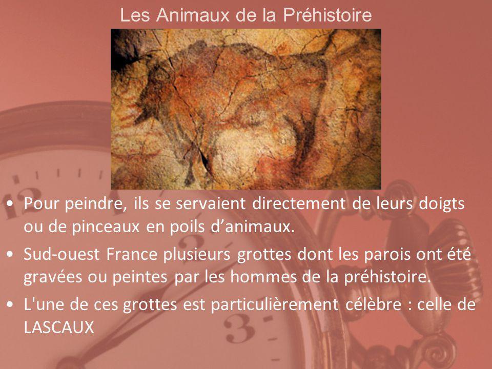 Les Animaux de la Préhistoire Aujourdhui, plus possible de la visiter.