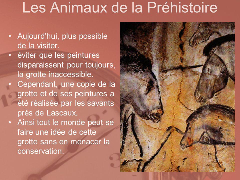 Les Animaux de la Préhistoire Aujourdhui, plus possible de la visiter. éviter que les peintures disparaissent pour toujours, la grotte inaccessible. C