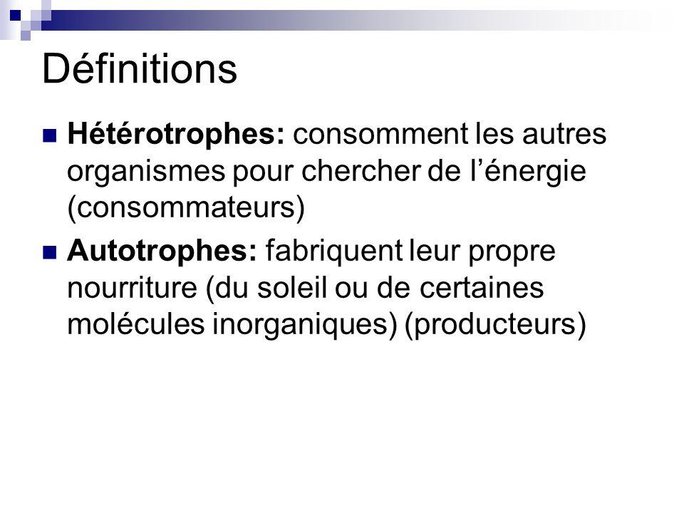 Définitions Hétérotrophes: consomment les autres organismes pour chercher de lénergie (consommateurs) Autotrophes: fabriquent leur propre nourriture (