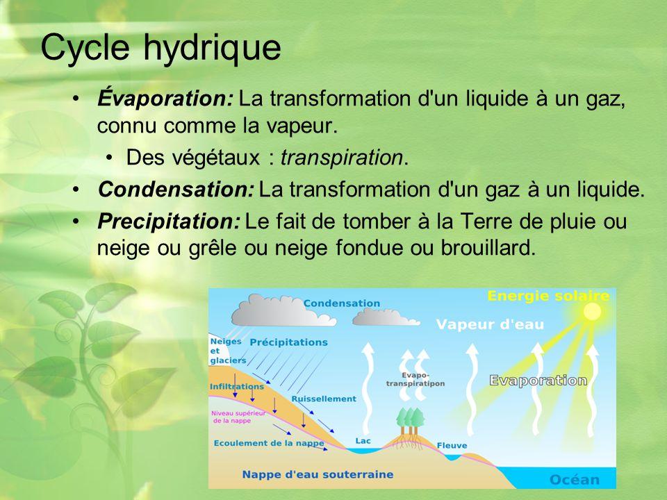 Cycle hydrique Évaporation: La transformation d un liquide à un gaz, connu comme la vapeur.