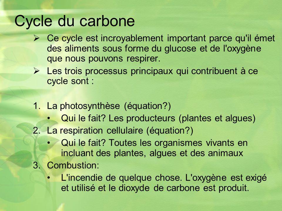 Cycle du carbone Ce cycle est incroyablement important parce qu il émet des aliments sous forme du glucose et de l oxygène que nous pouvons respirer.