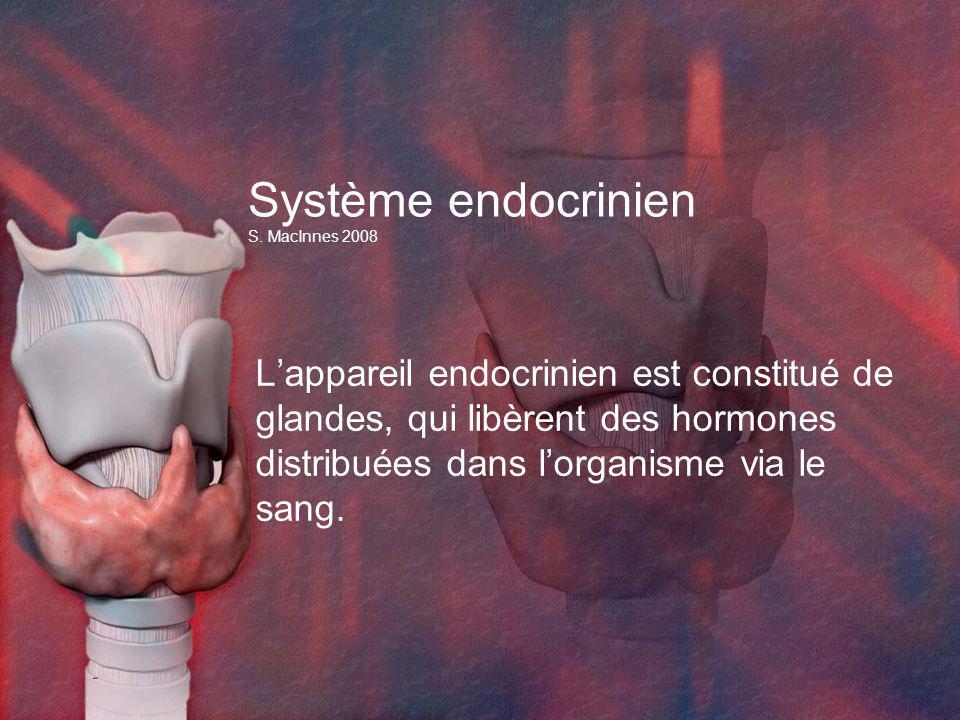 Système endocrinien S. MacInnes 2008 Lappareil endocrinien est constitué de glandes, qui libèrent des hormones distribuées dans lorganisme via le sang