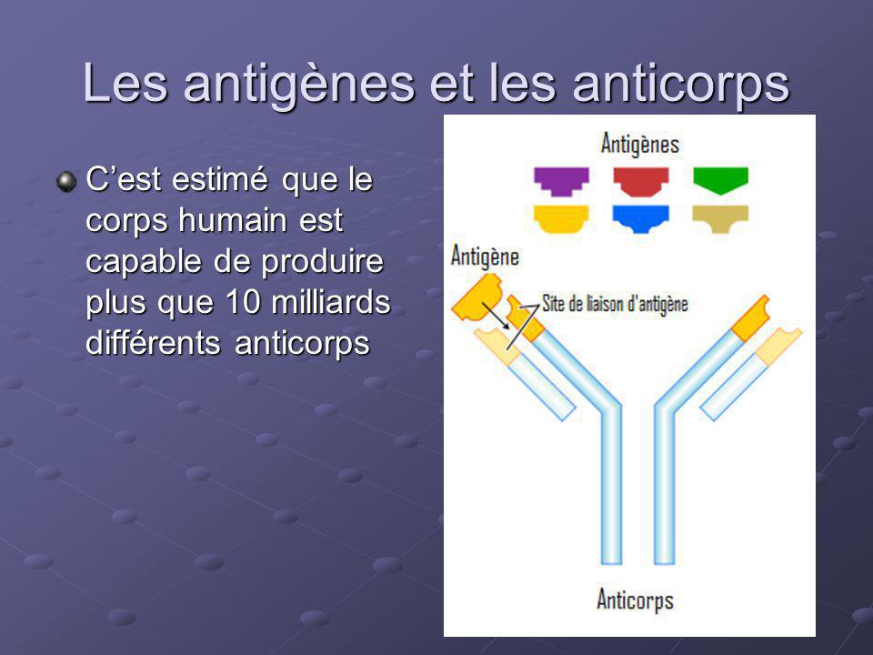 Les antigènes et les anticorps Cest estimé que le corps humain est capable de produire plus que 10 milliards différents anticorps