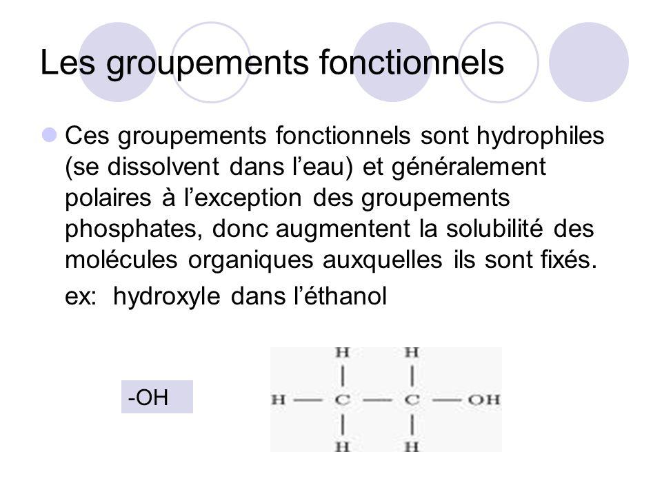 Les groupements fonctionnels Ces groupements fonctionnels sont hydrophiles (se dissolvent dans leau) et généralement polaires à lexception des groupem