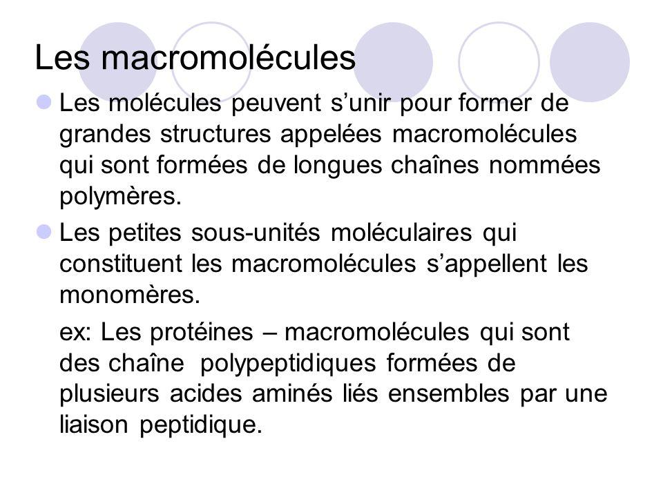 Les macromolécules Les molécules peuvent sunir pour former de grandes structures appelées macromolécules qui sont formées de longues chaînes nommées p