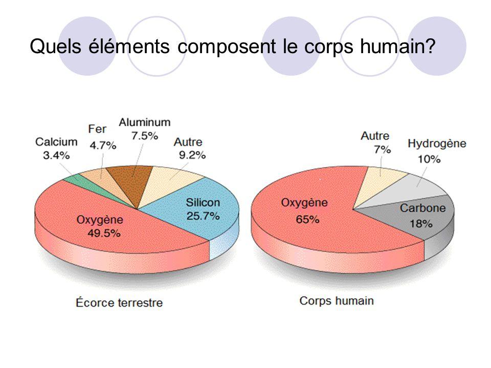 Quels éléments composent le corps humain?