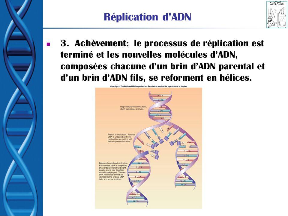 Réplication dADN 3. Achèvement: le processus de réplication est terminé et les nouvelles molécules dADN, composées chacune dun brin dADN parental et d