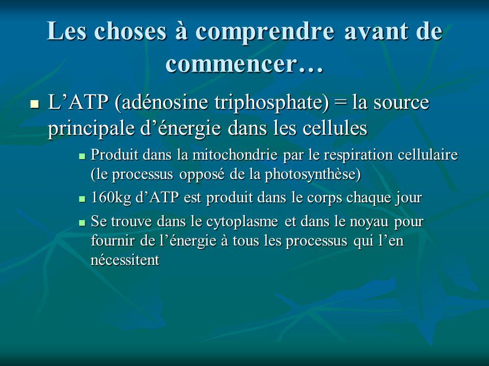 Les choses à comprendre avant de commencer… LATP (adénosine triphosphate) = la source principale dénergie dans les cellules LATP (adénosine triphospha