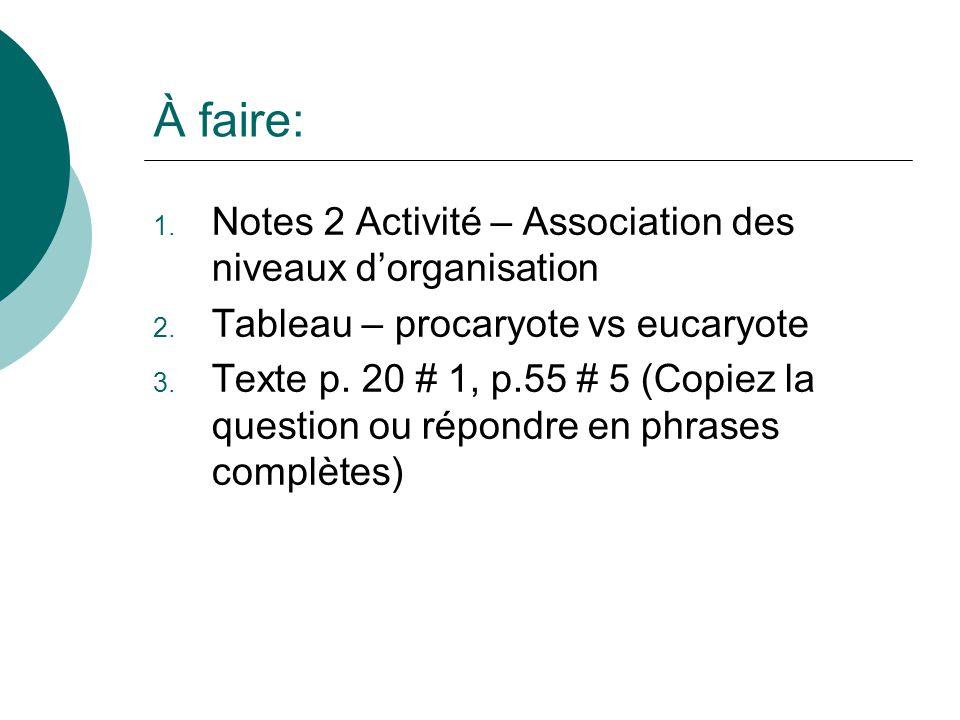À faire: 1. Notes 2 Activité – Association des niveaux dorganisation 2. Tableau – procaryote vs eucaryote 3. Texte p. 20 # 1, p.55 # 5 (Copiez la ques