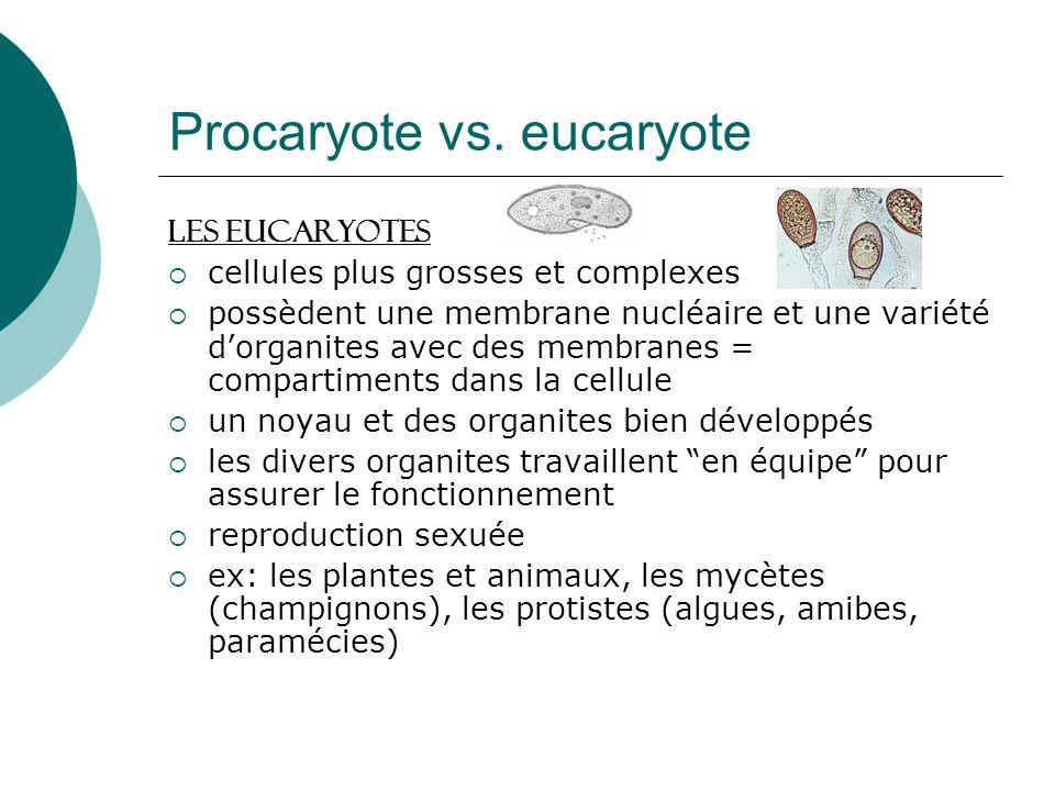 Procaryote vs. eucaryote Les Eucaryotes cellules plus grosses et complexes possèdent une membrane nucléaire et une variété dorganites avec des membran