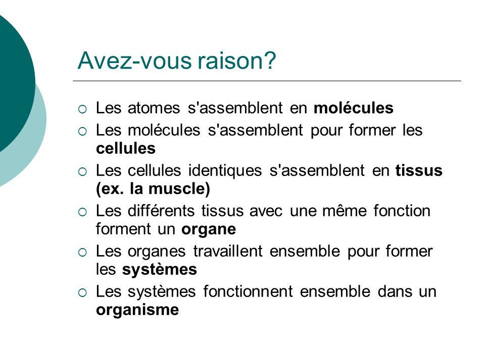Avez-vous raison? Les atomes s'assemblent en molécules Les molécules s'assemblent pour former les cellules Les cellules identiques s'assemblent en tis