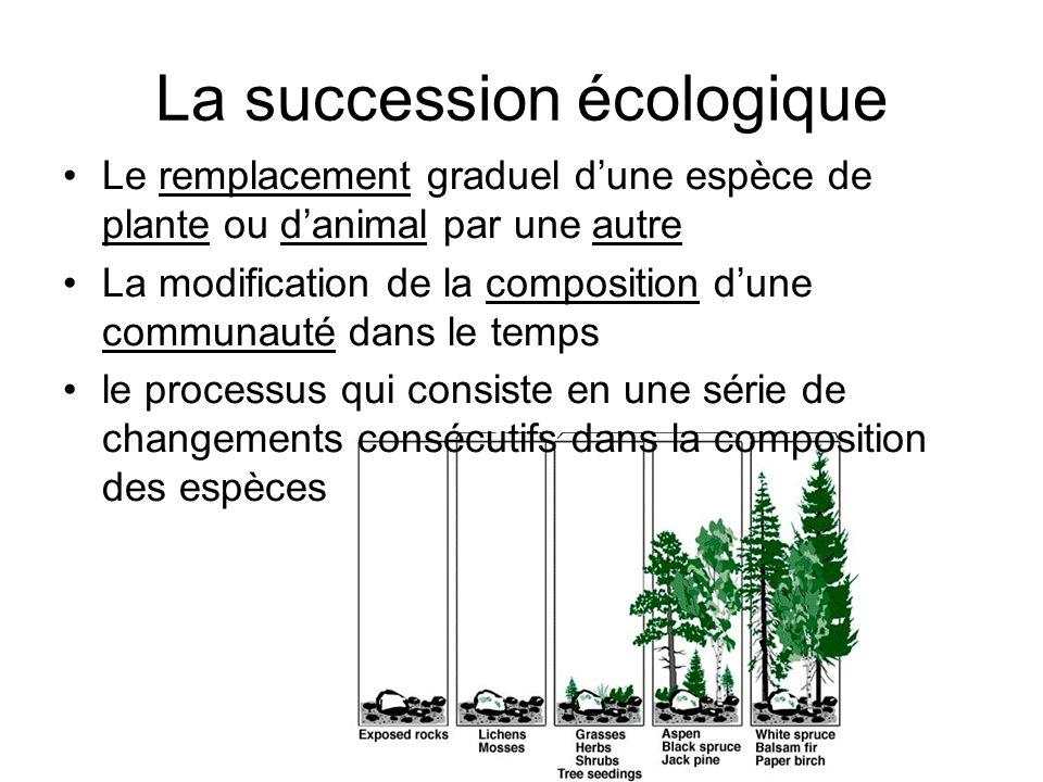 Le remplacement graduel dune espèce de plante ou danimal par une autre La modification de la composition dune communauté dans le temps le processus qu