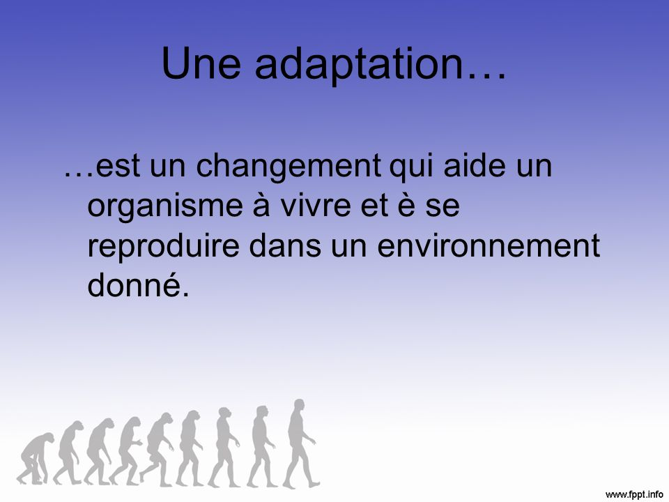Les Adaptations Il y a trois types dadaptations: 1.Structurales – lapparence 2.Physiologiques – fonction 3.Comportementales – actions