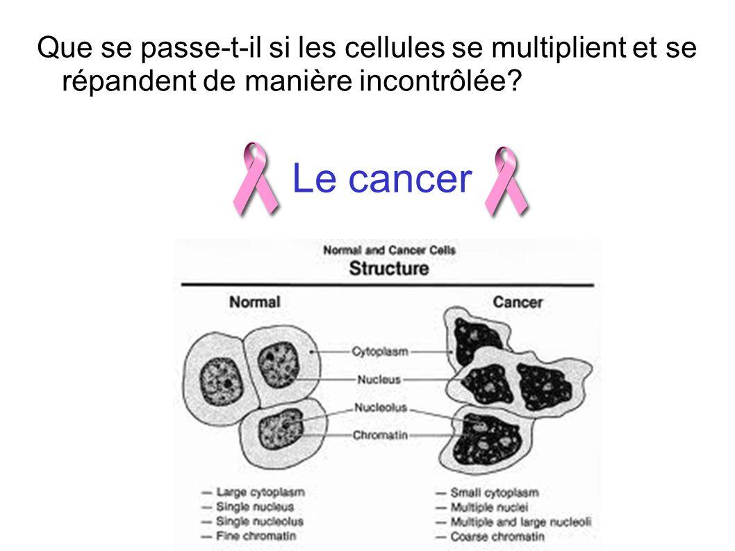 Que se passe-t-il si les cellules se multiplient et se répandent de manière incontrôlée? Le cancer