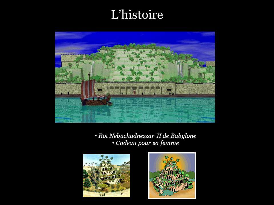 Lhistoire Roi Nebuchadnezzar II de Babylone Cadeau pour sa femme