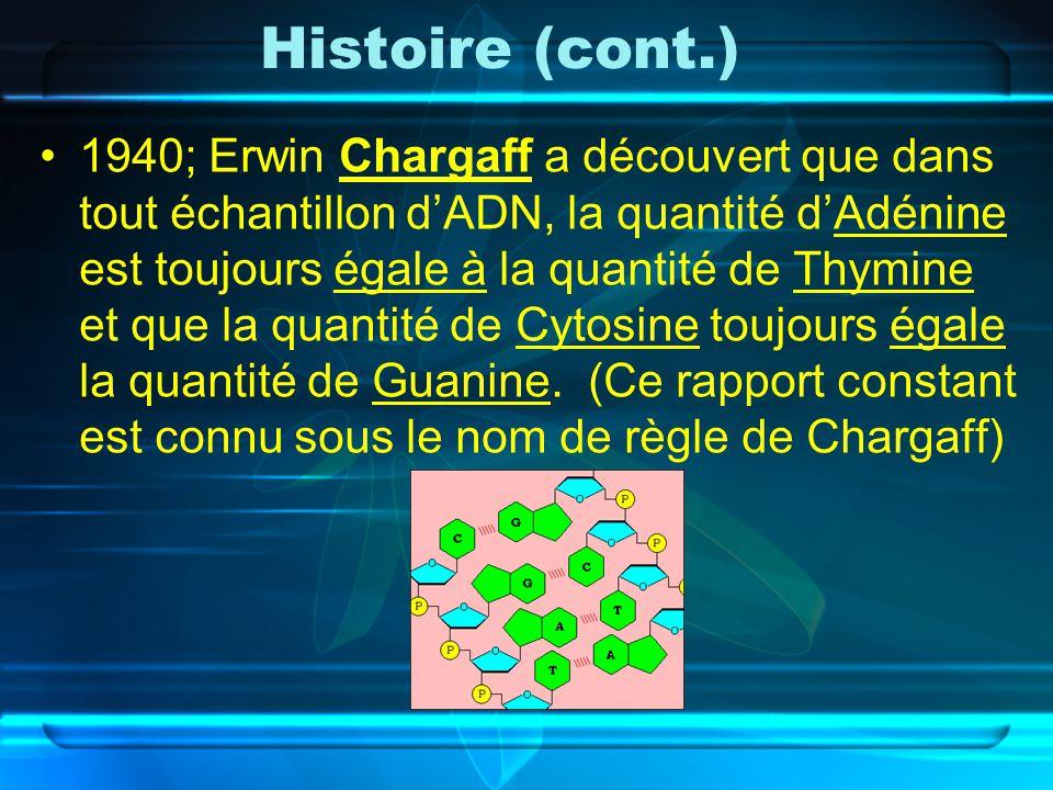 Histoire (cont.) 1940; Erwin Chargaff a découvert que dans tout échantillon dADN, la quantité dAdénine est toujours égale à la quantité de Thymine et