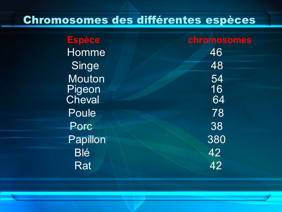 Chromosomes des différentes espèces Espèce chromosomes Homme 46 Singe 48 Mouton 54 Pigeon 16 Cheval 64 Poule 78 Porc 38 Papillon 380 Blé 42 Rat 42