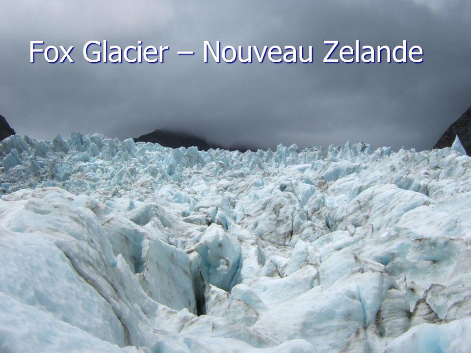 Fox Glacier – Nouveau Zelande