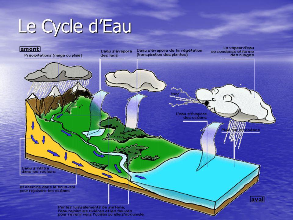 Les Océans, les Rivières et les Lacs Combien docéans y a-t-il dans le monde.