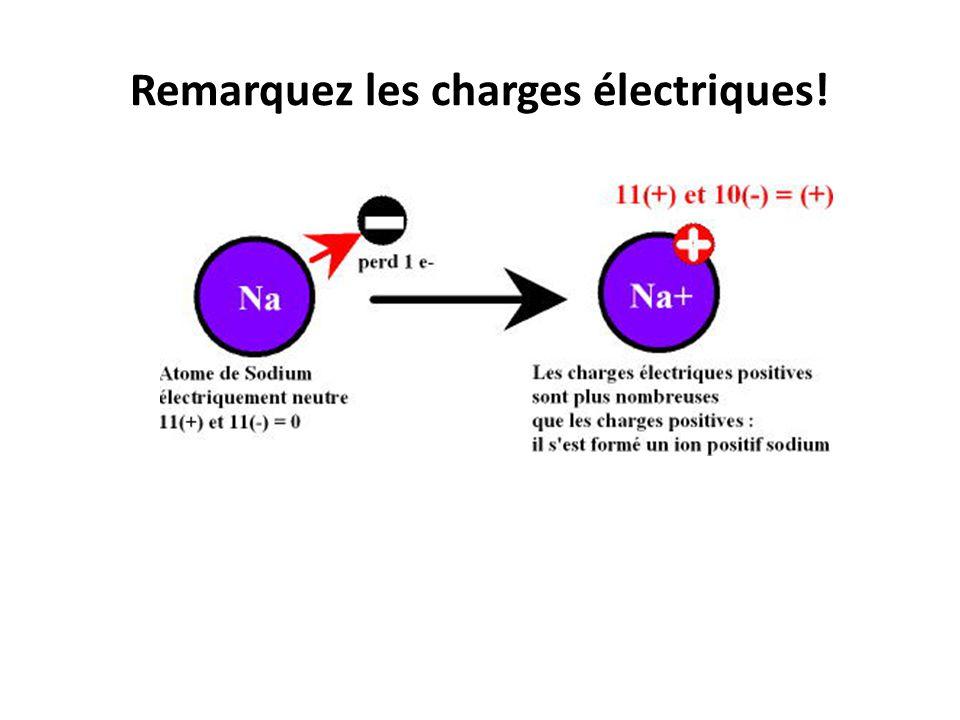 Remarquez les charges électriques!