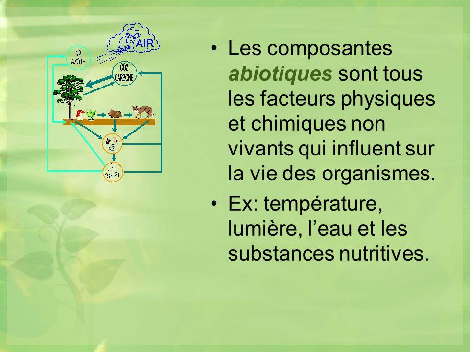 Les composantes abiotiques sont tous les facteurs physiques et chimiques non vivants qui influent sur la vie des organismes.