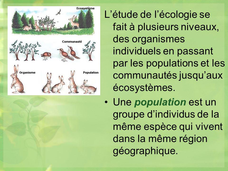 Létude de lécologie se fait à plusieurs niveaux, des organismes individuels en passant par les populations et les communautés jusquaux écosystèmes.