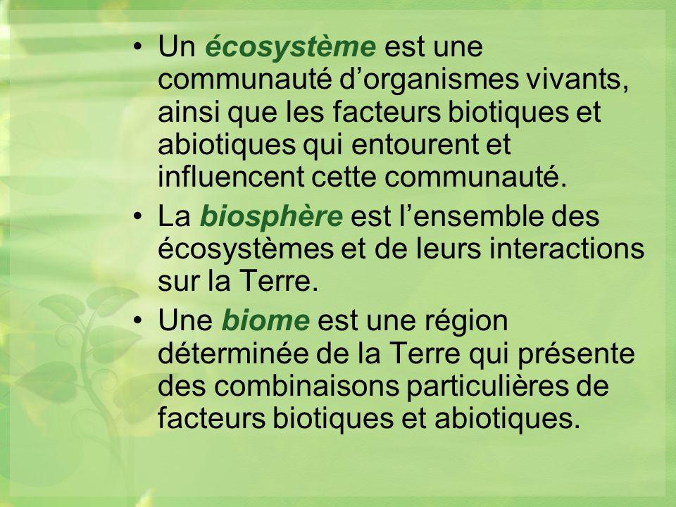 Un écosystème est une communauté dorganismes vivants, ainsi que les facteurs biotiques et abiotiques qui entourent et influencent cette communauté.